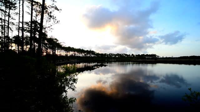 zeitraffer von vor sonnenaufgang wolken zog mit spiegelbild im ruhigen wald fluss - kieferngewächse stock-videos und b-roll-filmmaterial