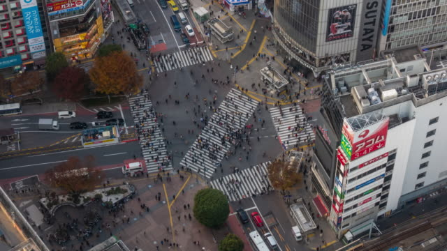time lapse of shibuya crossing from top view at twilight in tokyo, japan - inerpicarsi video stock e b–roll
