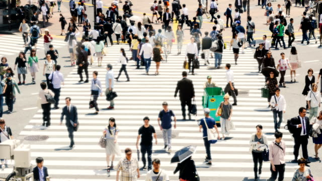 Time Lapse of Shibuya Crossing in Tokyo video
