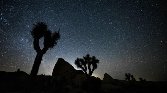 ジョシュア ツリーの砂漠の上の星空のタイムラプス - ジョシュアツリー国立公園点の映像素材/bロール