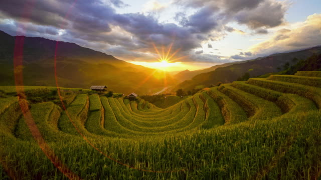Time lapse of Sunset over Terraced rice fields, Mu Cang Chai, Yen Bai, Vietnam Time lapse of Sunset over Terraced rice fields, Mu Cang Chai, Yen Bai, Vietnam sa pa stock videos & royalty-free footage