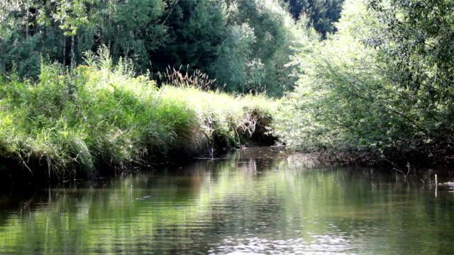 stockvideo's en b-roll-footage met time-lapse op riviertje, tsjechische landschap - s