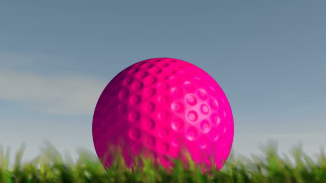 Time lapse over a day of a pink lawn hockey ball in the grass video