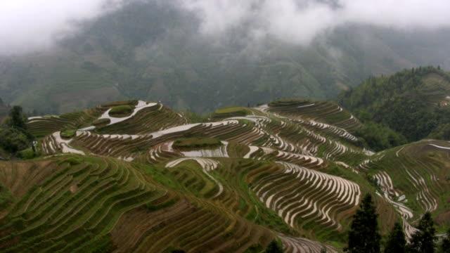 upływ czasu. ryżu pola longji, guilin, chiny hd - longji tetian filmów i materiałów b-roll
