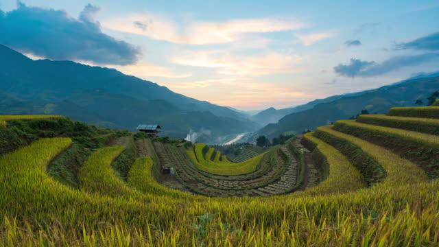 4k time lapse : pola ryżowe na tarasie w yenbai vietnam.beautiful tarasowe pole ryżowe w sezonie zbiorów w zachodzie słońca w mu cang chai - pole ryżowe filmów i materiałów b-roll