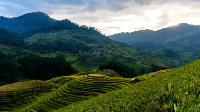 Time lapse - Rice fields on terraced of Mu Cang Chai, YenBai, Vietnam. (effect pan) Time lapse - Rice fields on terraced of Mu Cang Chai, YenBai, Vietnam. (effect pan) sa pa stock videos & royalty-free footage