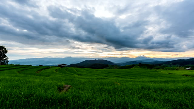 time lapse - scenes of moving clouds with sunset at terraced rice fields in chiang mai, thailand (zoom shot) - cespuglio tropicale video stock e b–roll