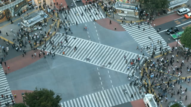 time lapse shibuya cross-walk - 澀谷交叉點 個影片檔及 b 捲影像