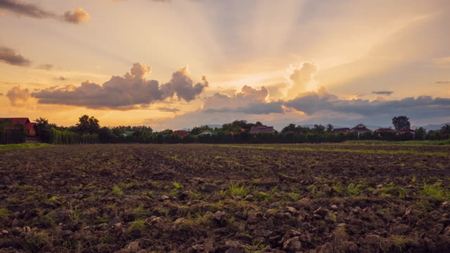 4K Time lapse : Soil preparation and beautiful sunrise in morning 4K Time lapse : Soil preparation and beautiful sunrise in morning sowing stock videos & royalty-free footage