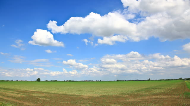Time Lapse: Spring Rural Landscape Clouds in Motion Agricultural Fields