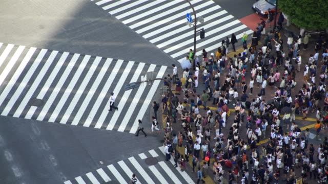 Time Lapse Tokyo Shibuya Crossing video