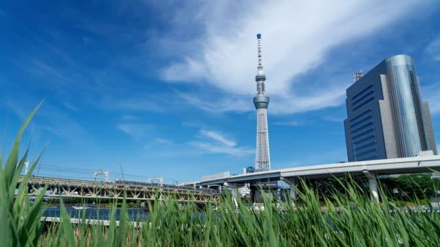 東京の青空を持つタイムラプス東京スカイツリー、日本 - 緑 ビル点の映像素材/bロール