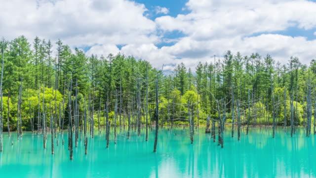 timelapse vackra blå damm (aoiike) med speglar molnet och blå himmel i biei, hokkaido japan - hokkaido bildbanksvideor och videomaterial från bakom kulisserna