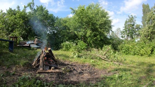 vídeos de stock e filmes b-roll de timelapse bonfire in the summer. bonfire in nature. - inflamável
