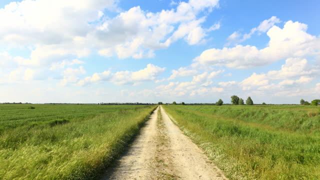 vídeos de stock e filmes b-roll de timelapse de hd: countryroad com nuvens em movimento - reto descrição física