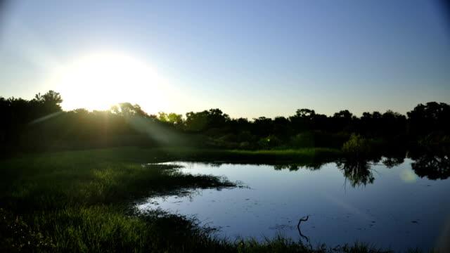 timelapse de atardecer en pantano - vídeo