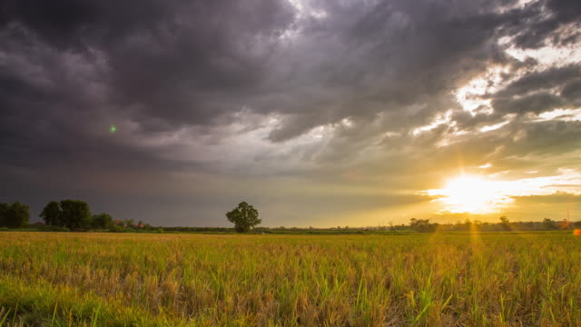 4K Time-lapse : Field and Rainclouds with Sunset Time-lapse video