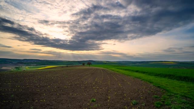vídeos de stock e filmes b-roll de time-lapse footage of sunset over beautiful rural countryside. - terra cultivada