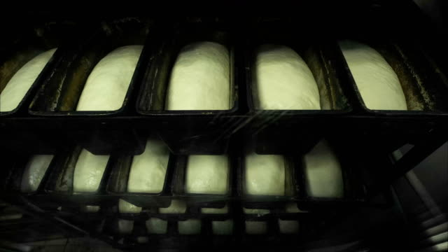 timelapse, growing the dough of yeast bread in the forms - formare pane video stock e b–roll