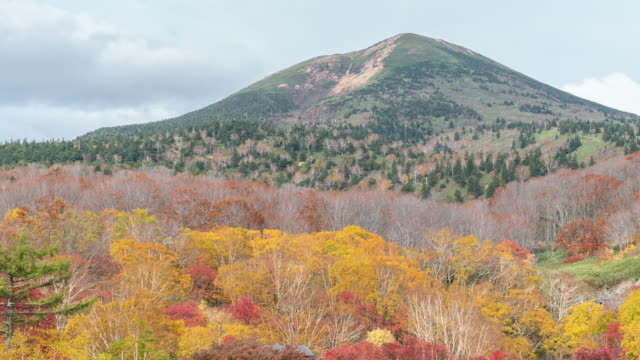 Time-lapse: Hakkoda Mountain with Red Leave Forest, Aomori Japan video
