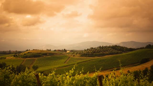 hd: ekspozycja poklatkowa w toskania winnica przed burza z piorunami - kultura włoska filmów i materiałów b-roll