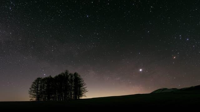 タイムラプス・カラ松の森と天の川 - 星型点の映像素材/bロール