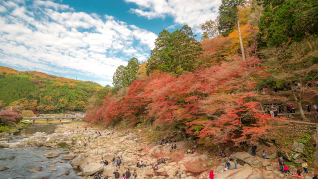 Time-lapse: korankei Forest park with Autumn Red Leave Nagoya Japan video