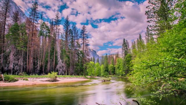 Timelapse - Merced  River Running through Yosemite Valley - USA