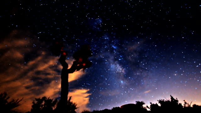 Timelapse Milky Way and Stars Galaxy Passing over Joshua Tree video