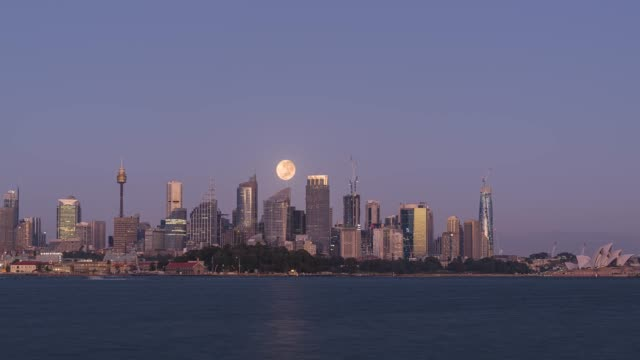 호주 시드니 를 통해 딸기 문셋의 타임 랩스 - 시드니 뉴사우스웨일스 스톡 비디오 및 b-롤 화면