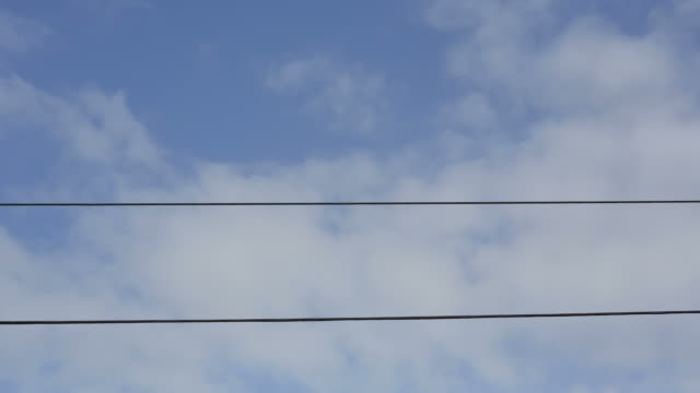 Time-lapse of birds on  wires, clouds moving through background video