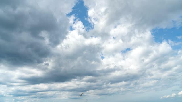 vídeos de stock, filmes e b-roll de tempo-lapso 4k do céu azul e das nuvens na praia de wasaga de ontário, canadá. - só céu