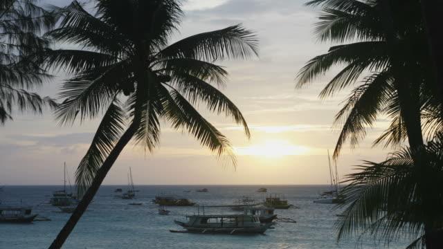 timelapse von boracay strand sonnenuntergang in den philippinen - tropischer baum stock-videos und b-roll-filmmaterial