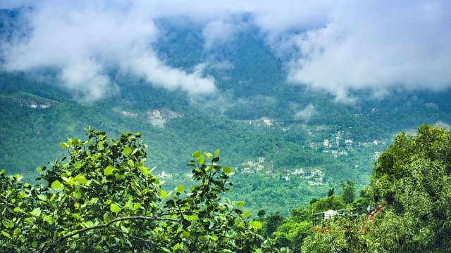 zeitraffer der wolken und bäume in hügeln. - himachal pradesh stock-videos und b-roll-filmmaterial