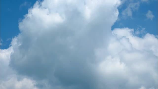 vídeos de stock e filmes b-roll de timelapse of clouds in sky - fofo texturizado
