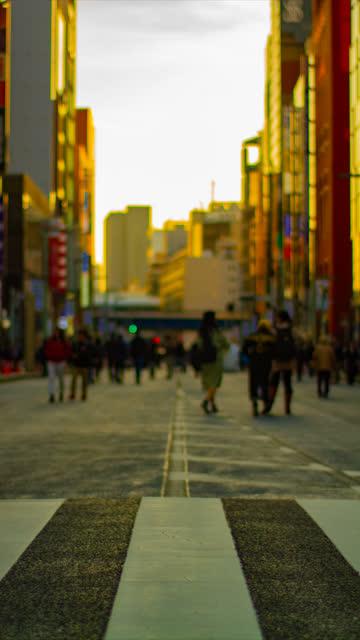 Ein Zeitraffer der Innenstadtstraße in Ginza tagsüber vertikal – Video