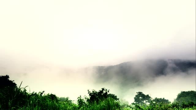 Timelapse of fog video