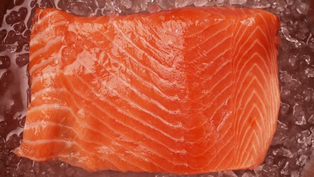 Timelapse of melting ice around fresh raw piece of salmon. Fresh salmon fillet close up Timelapse of melting ice around fresh raw piece of salmon. Fresh salmon fillet close up. High quality FullHD footage fillet stock videos & royalty-free footage