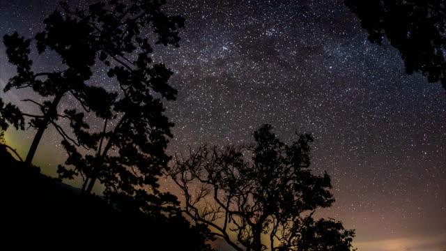 timelapse of moving star trails in night sky. - побережье мексиканского залива сша стоковые видео и кадры b-roll
