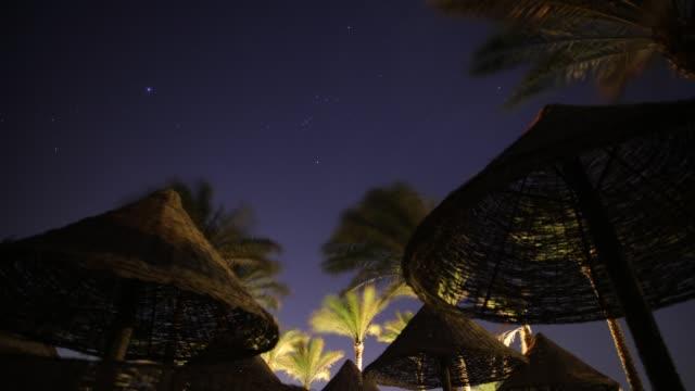 zeitraffer der palmen im sternbild des orion nacht beach resort - weltraum und astronomie stock-videos und b-roll-filmmaterial