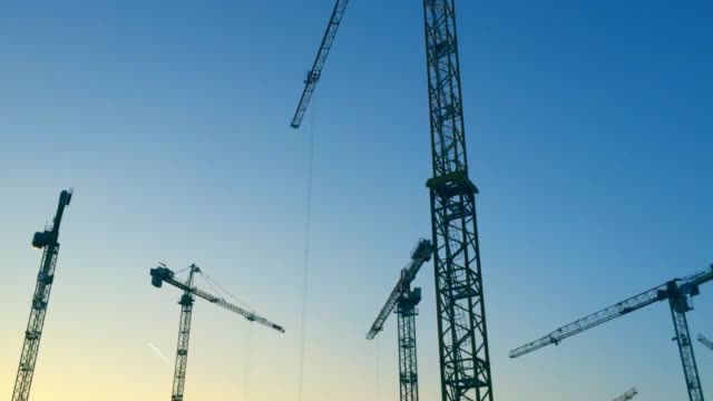 timelapse of silhouette of cranes