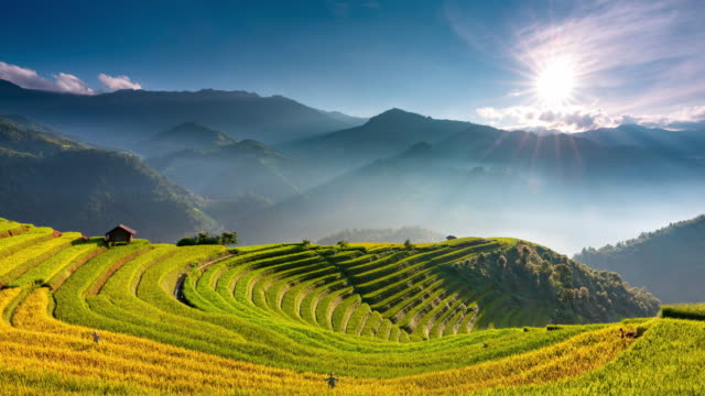 4K Timelapse of Sunrise over Terraced rice fields, Mu Cang Chai, Yen Bai, Vietnam 4K Timelapse of Sunrise over Terraced rice fields, Mu Cang Chai, Yen Bai, Vietnam sa pa stock videos & royalty-free footage