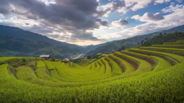 4K Timelapse of Sunset over Terraced rice fields, Mu Cang Chai, Yen Bai, Vietnam 4K Timelapse of Sunset over Terraced rice fields, Mu Cang Chai, Yen Bai, Vietnam sa pa stock videos & royalty-free footage