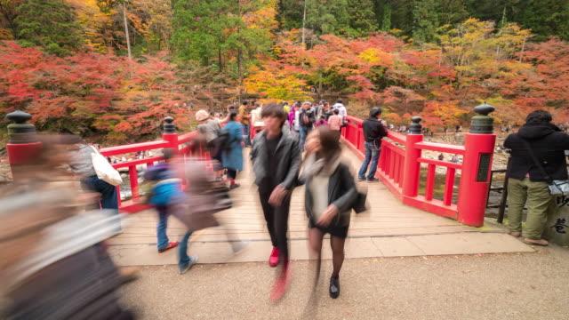 時間経過は: 歩行者こうらんけい森林公園秋名古屋で混雑 - トヨタ点の映像素材/bロール