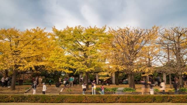 Time-lapse: Pedestrians crowded at Tachikawa Garden Tokyo Japan video