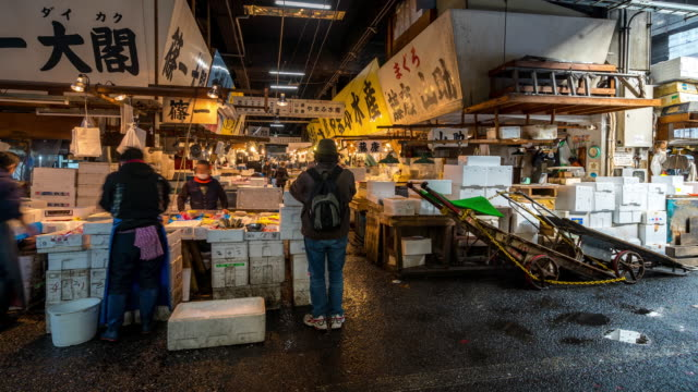 vidéos et rushes de time-lapse: piétons bondés à tsukiji fish marché tokyo japon - marché établissement commercial