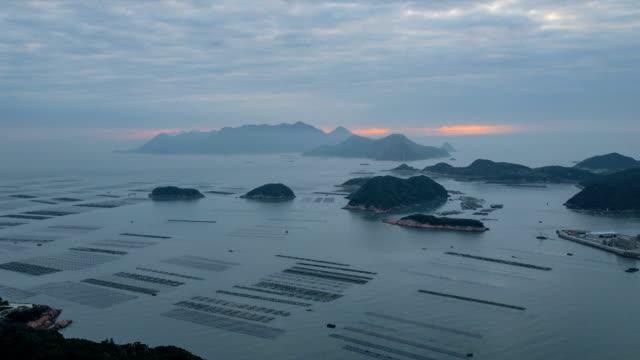 time-lapse :seaweed farming at xiapu fujian china. - илистая пойма стоковые видео и кадры b-roll