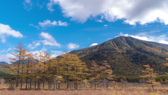 Time-lapse: Senjogahara Viewpoint upper Nikko Tochigi Japan video