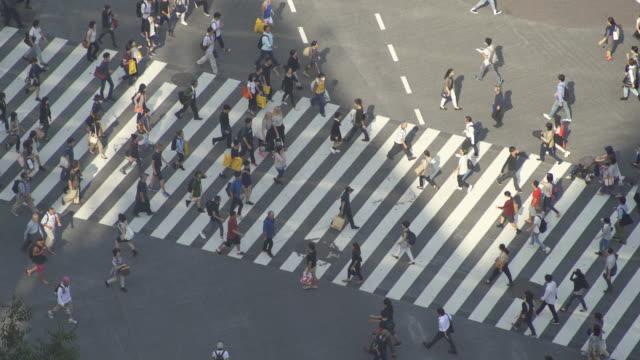Time-lapse Shibuya Crossing, Japan video