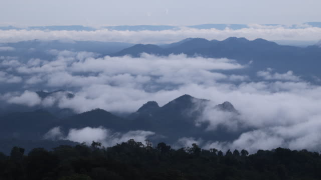 Timelapse the mist around mountain at tropical rain forest . Thailand video